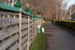 trästaket med gräsplanöverkanten Royaltyfri Fotografi