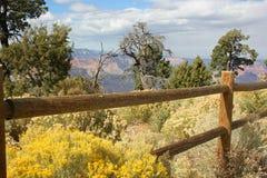Trästaket med grandet Canyon arkivbilder