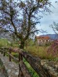Trästaket och gammalt hus i en by royaltyfri bild