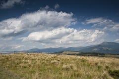 Trästaket på en äng i de Carpathian bergen Arkivbild