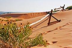 Trästaket på sanddynen arkivbilder