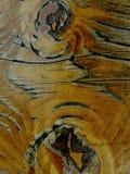 trästaketbakgrund, abstrakt begrepp för efect för texturtapetsvart vitt fantastiskt wood Arkivfoto