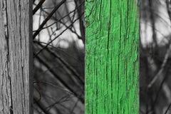 Trästaketet med ett band färgade för att göra grön arkivbild