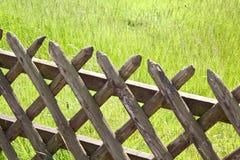 trästaketgräs Arkivbilder