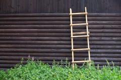 Trästege mot väggen av journalhuset med trätextur och fnuren på yttersidan royaltyfri bild