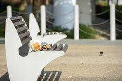 Trästol i en parkera Royaltyfri Fotografi