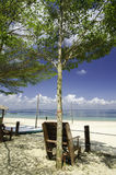 Trästol under ett träd som vänder mot det klara blåa havsvattnet på den soliga dagen Arkivfoto