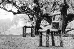 Trästolar i skogen av Chiangmai Thailand Royaltyfri Foto