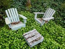 Trästolar som omges av ogräs och murgrönan Royaltyfria Foton