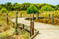 Trästrandpromenad i dyerna som leder till den sandiga stranden, PA Arkivfoto
