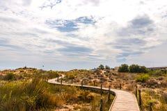 Trästrandpromenad i dyerna som leder till den sandiga stranden, PA Royaltyfri Fotografi