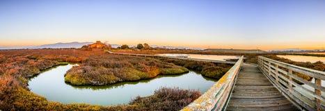 Trästrandpromenad till och med de tidvattens- träsken av Alviso, Don Edwards San Francisco Bay National djurlivfristad, San Jose, royaltyfri fotografi