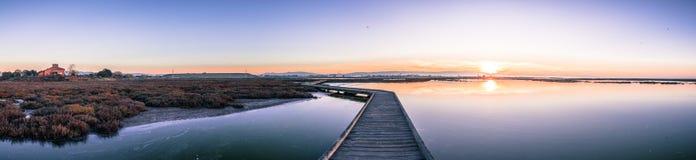Trästrandpromenad till och med de tidvattens- träsken av Alviso, Don Edwards San Francisco Bay National djurlivfristad, San Jose, arkivbilder