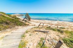 Trästrandpromenad vid stranden i den Scoglio di Peppino kusten Arkivfoton