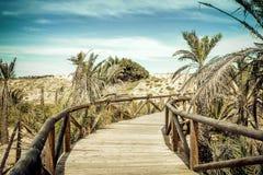 Trästrandtillträde över sanddyn Alicante Spanien royaltyfria bilder