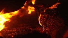 Trästrukturen bränner med gnistor på natten lager videofilmer