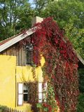 Träsummerhouse i trädgården, Litauen arkivbilder