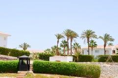 träsvart vaktbås som utomhus bevakar för landsbrunnsort för stolpe varma tropiska exotiska palmträd för gröna växter för bakgrund arkivfoto