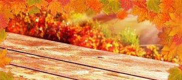 Trätabell, färgrika höstsidor i vingården som bakgrund royaltyfri foto