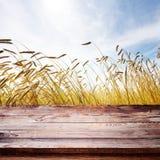 Trätabell med bakgrund för vetefält Blå himmel över moget gult vetefält Sommarbakgrund, förlöjligar upp för design Arkivbilder