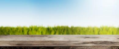Trätabell mot frodigt grönt fält under brett bakgrundsbaner för blå himmel royaltyfri fotografi