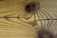 Trätextur med den naturliga wood modellen Royaltyfri Fotografi