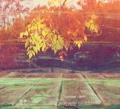 Trätexturerad bakgrund för gammal colorfull Arkivfoton