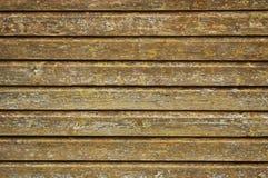 trätexturvägg Arkivbilder