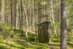 Trätoalett i skogen Fotografering för Bildbyråer