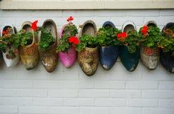 Träträskor med blommor Arkivbild
