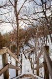 Trätrappa och broar Arkivbild