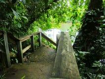 Trätrappa till floden Arkivfoto
