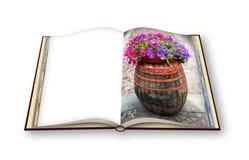 Trätrumma med blomkrukan över - 3D framför fotobokconcep Fotografering för Bildbyråer