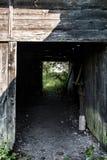 Trätunnelstruktur som byggs i en skog fotografering för bildbyråer