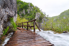Träturist- bana i Plitvice sjönationalpark Royaltyfri Fotografi