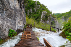 Träturist- bana i Plitvice sjönationalpark Arkivfoto