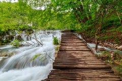 Träturist- bana i Plitvice sjönationalpark Fotografering för Bildbyråer