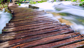 Träturist- bana i Plitvice sjönationalpark Royaltyfri Foto