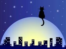 Träumerische Katze Lizenzfreie Stockfotos