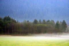 Träumerische Landschaft verloren im starken Nebel, Valle di Casies lizenzfreies stockbild