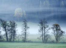 Träumerische Landschaft verloren im starken Nebel, Valle di Casies lizenzfreie stockfotos