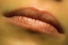 Träumerische Lippen Stockbild