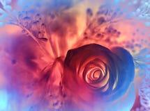 Träumerischer rosafarbener Blumenhintergrund Stockfotografie
