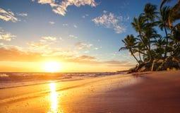 Träumerischer Sonnenaufgang auf einer Tropeninsel Stockbild