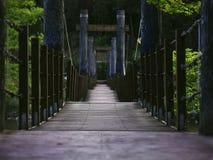 Träupphängningbro i skog med inga personer Royaltyfri Bild