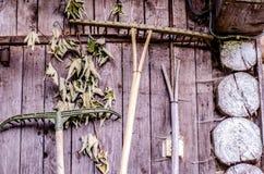 Trävägg av den lantliga kojan med jordbruks- hjälpmedel Royaltyfri Fotografi