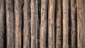 Trävägg för gammal planka Arkivfoto