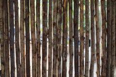 Trävägg i trädgården Royaltyfria Foton