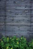 Trävägg med flovers fotografering för bildbyråer