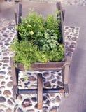 Trävagn som dekoreras med växter i vår Arkivfoto